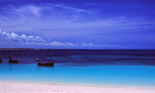 Viaggio in Tanzania…con Rosa Piccante