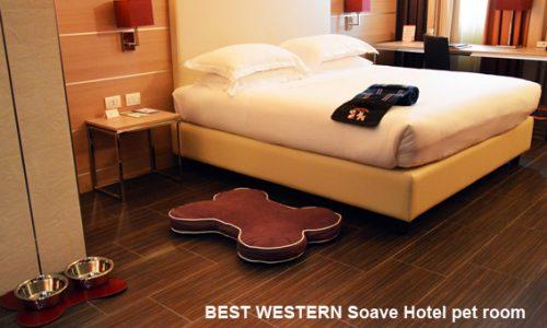 Hotel a quattro zampe…In vacanza, dove vuoi ma…con i Peli