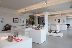 Museo a 4 zampe
