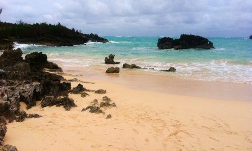 """A Bermuda per un Natale """"rosa"""""""