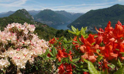 Il paradiso per gli amanti della natura